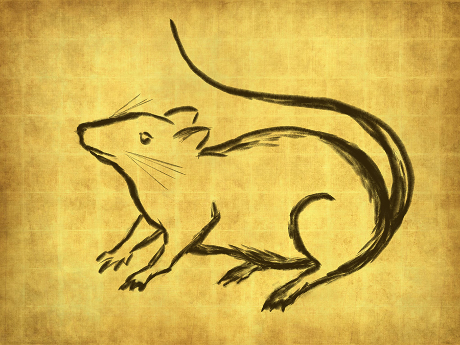 brush sketch of a rat on gold background